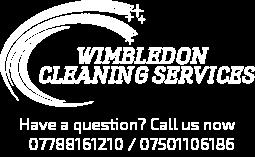Wimbledon Cleaning Servies